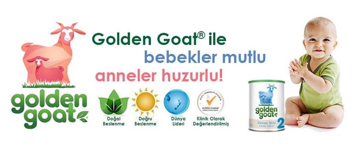 Golden Goat Banner